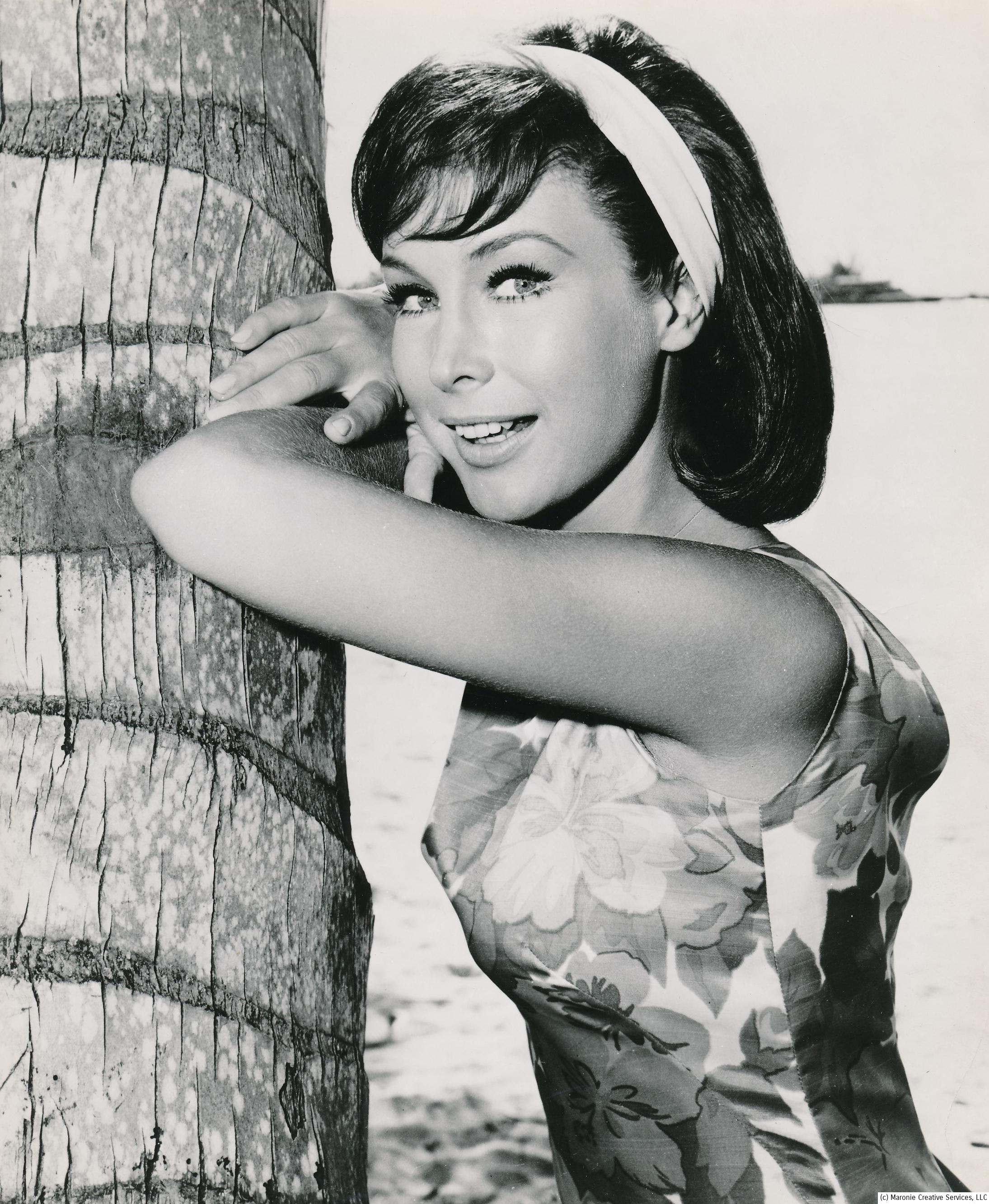 A rare photo of a brunette Barbara Eden, as she was seen in the 1964 film, Ride the Wild Surf, co-starring Tab Hunter. By this time Eden was a veteran of many movies and TV appearances. (c) Columbia Pictures.